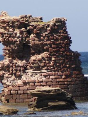 #084 - Torre Porto Paglia